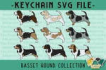 Basset Hound Collection SVG