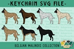 Belgian Malinois Collection SVG