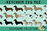 Dachshund Collection SVG