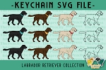 Labrador Retriever Collection SVG